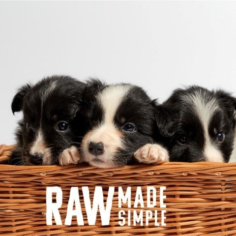Raw Made Simple Raw Dog Food
